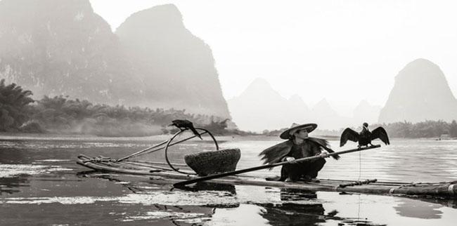 A Cormorant Fisherman